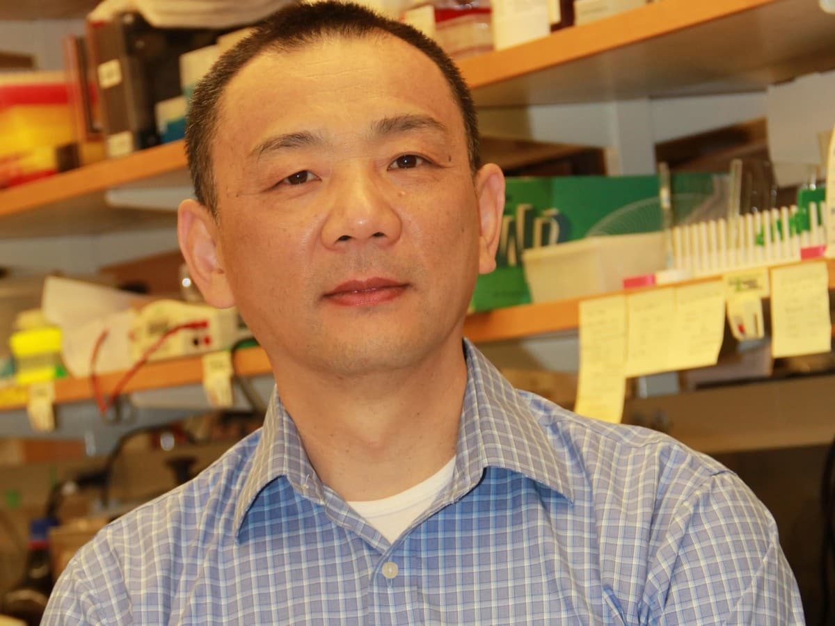 Gang Li PhD | Genetics Professor