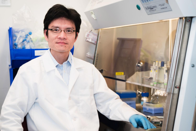 Tao Yang | Osteoarthritis Research